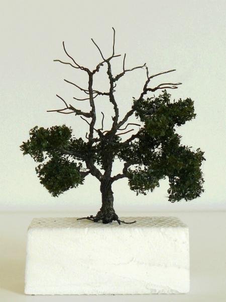 strommininatur7