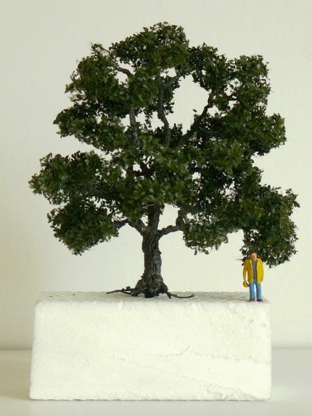 strommininatur8